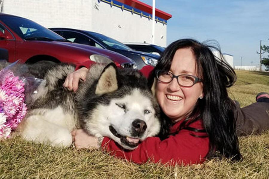 happy husky