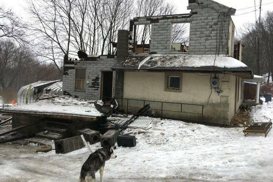husky chained outside house