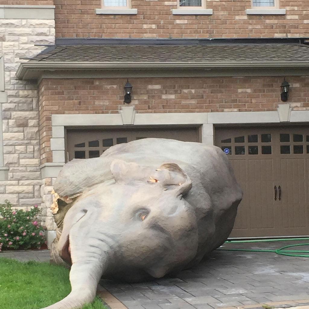yard-elephant