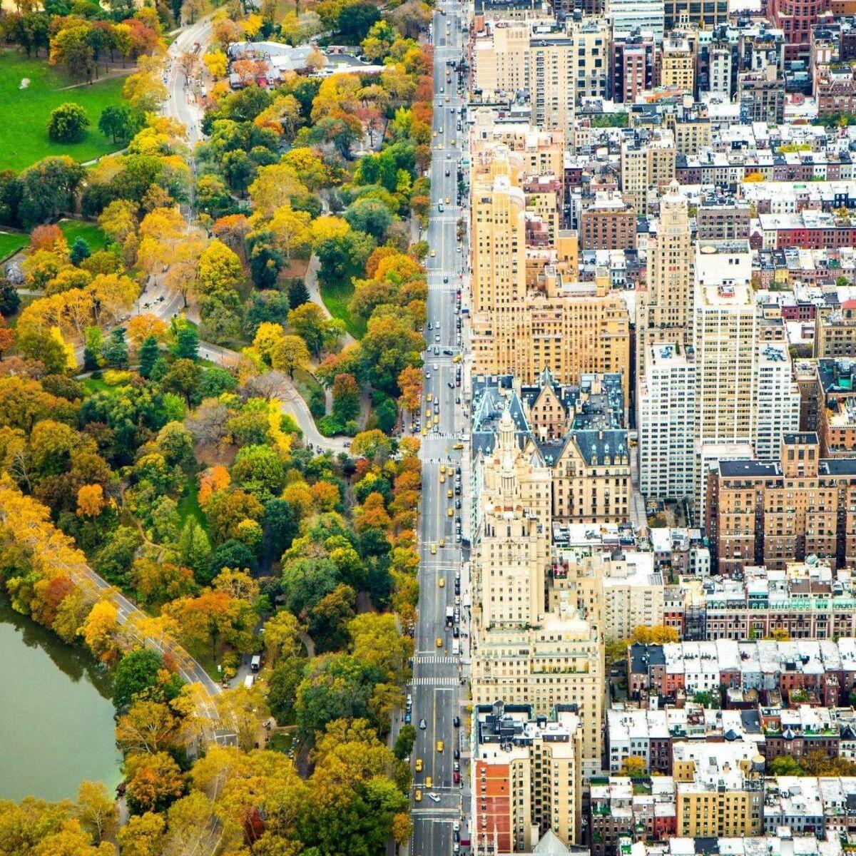 new york city half and half