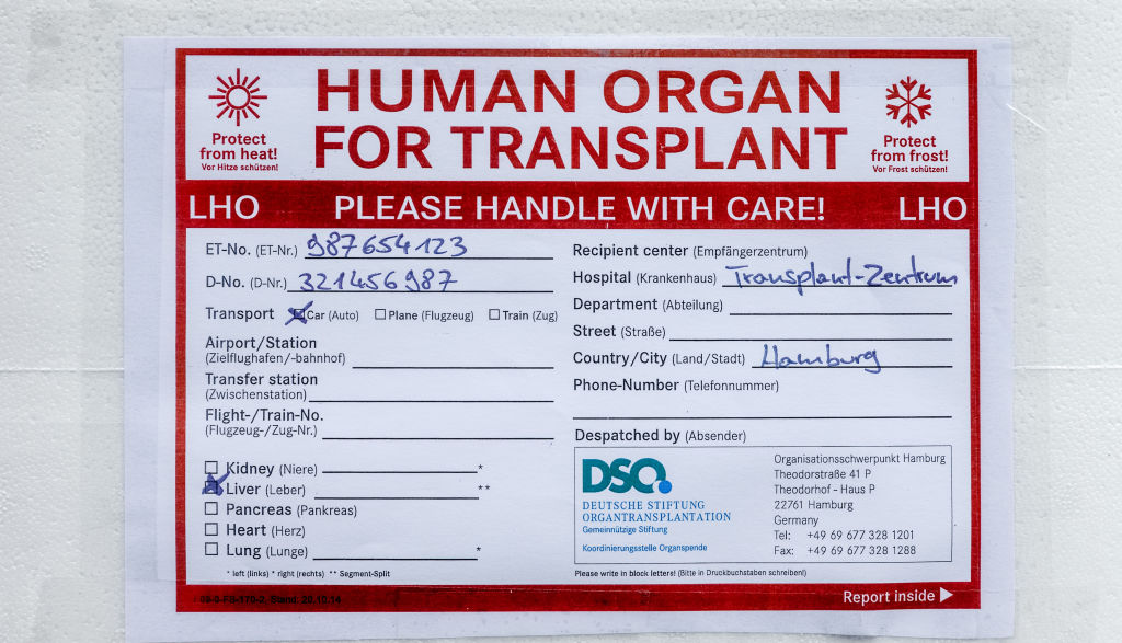 Organ transportation