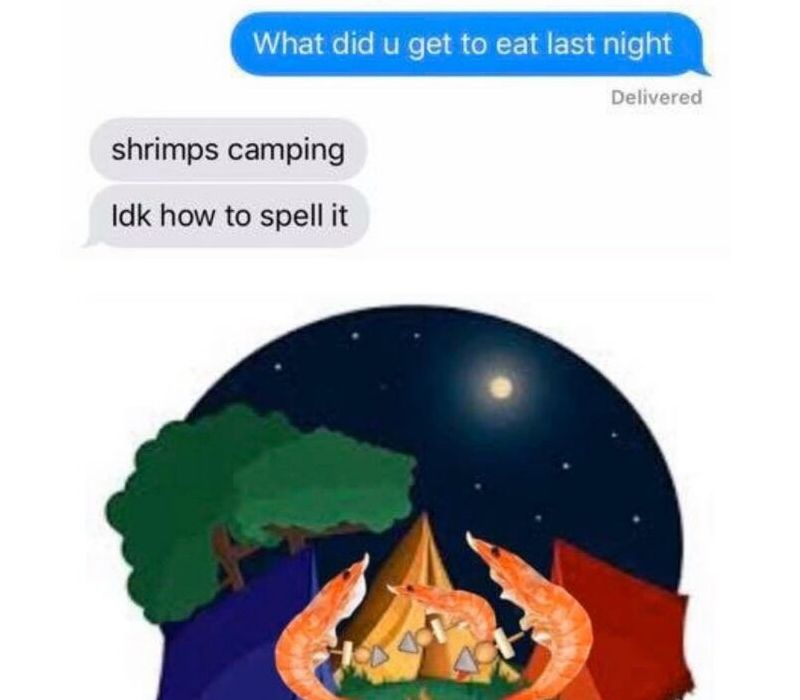 shrimps camping