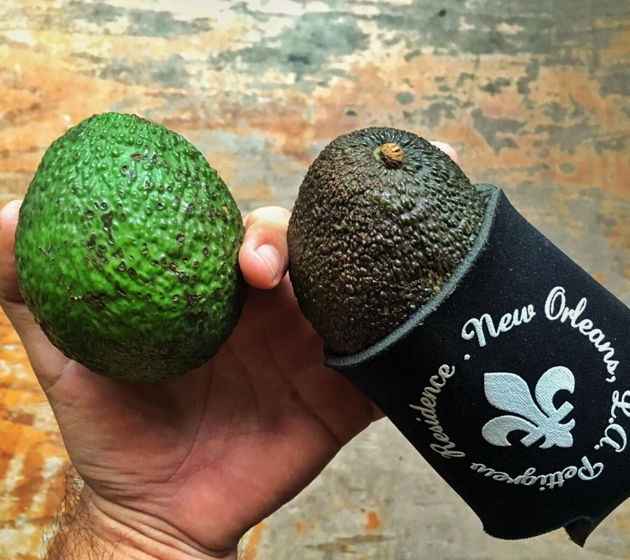 putting an avocado in a beer cozy to get it to get ripe