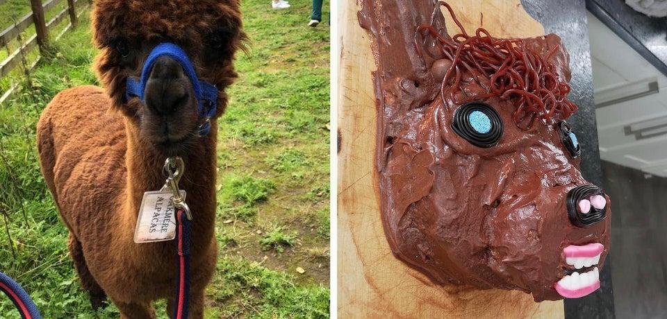 cake of nightmares