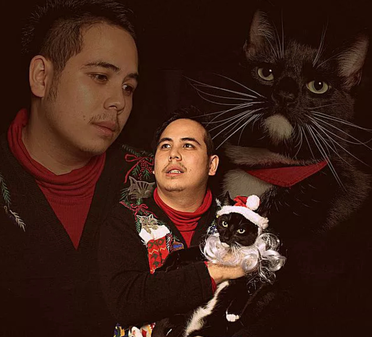 man does dramatic christmas card with cat