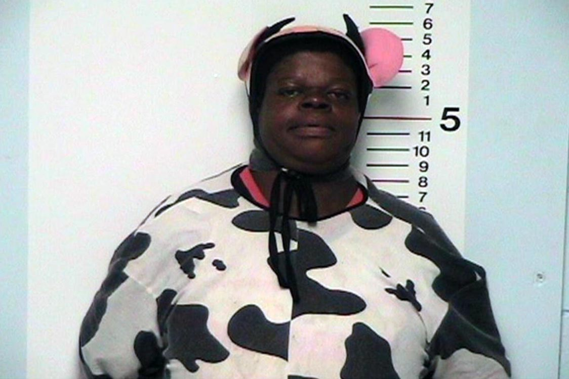A woman in a cow costume has her mug shot taken.