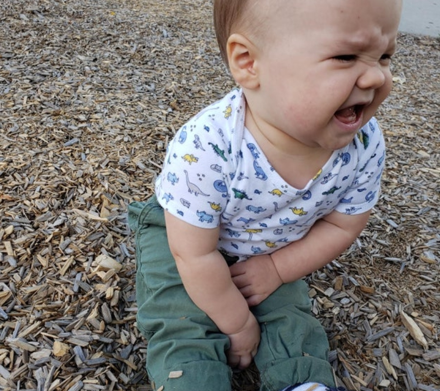 a kid crying because they aren't allowed to eat wood chips
