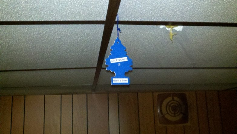 car air freshner hanging in smelly basement