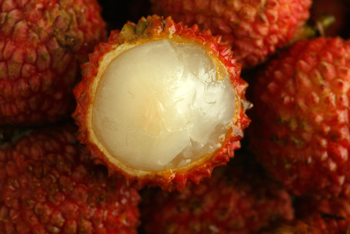 Lychees Taste Sweet For A Reason