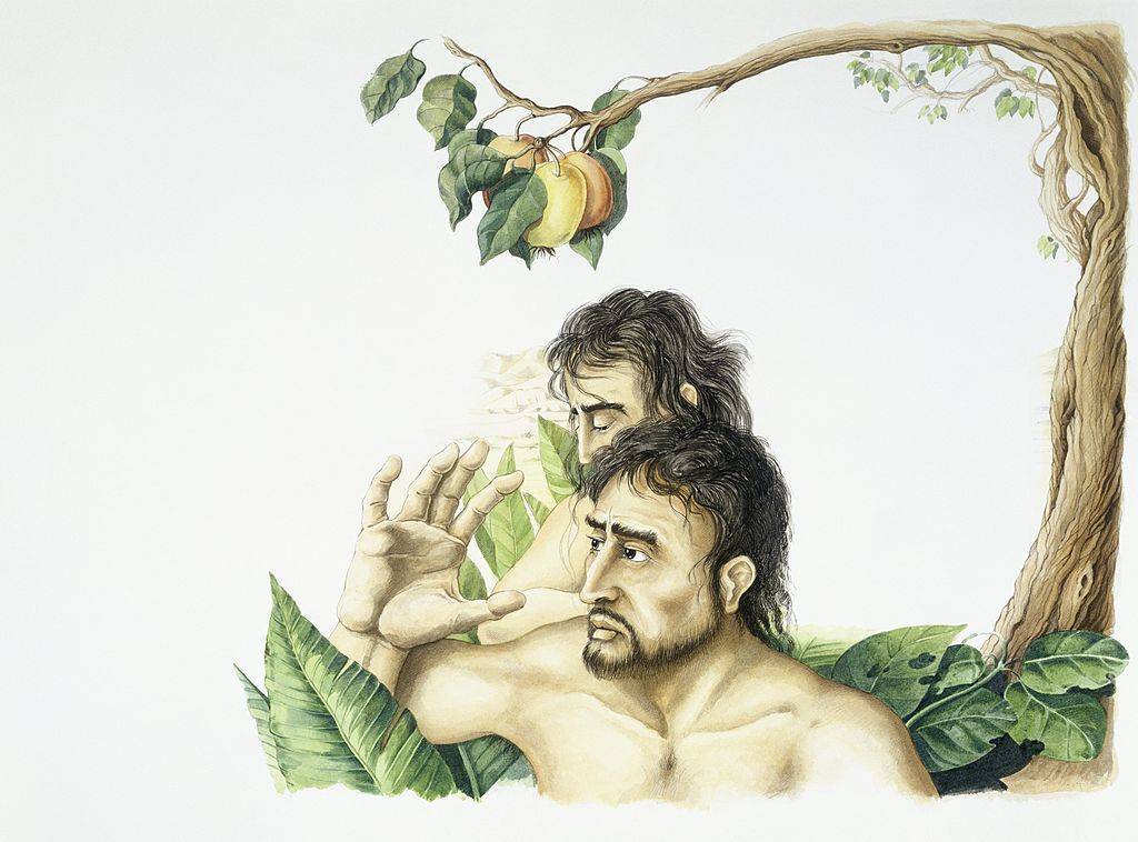 Picture of Adam and eve