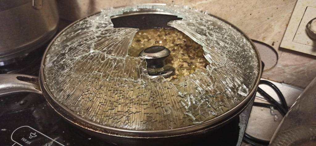 pot lid that shattered into dinner dish